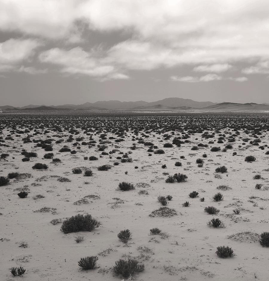 desierto-sergio-celume